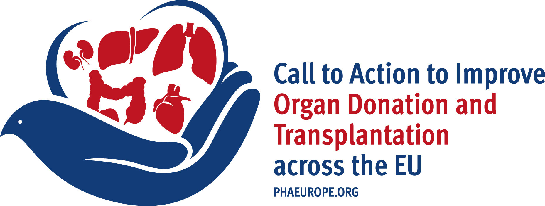 organ transplant True stories in their own words from transplant recipients, living donors, and donor families whose lives were forever changed and connected to organ donation and.